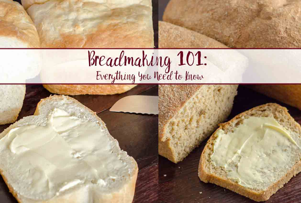 Bread Making 101: how to make bread and everything you need to know. Ingredients, ratios, process, what works, & what doesn't. Plus tips & tricks!